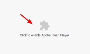 Chrome Flash options5